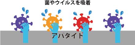 菌とウイルスを吸着